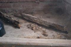 Berende gulv Steinhus 07